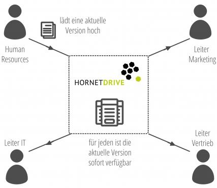 Hornetdrive Infografik